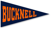 Bucknell Mini Logo Pennant Magnet from Collegiate Pacific