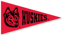 Northeastern Huskies Mini Logo Pennant Magnet from Collegiate Pacific