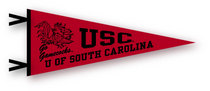 """6"""" x 15"""" pennant with flocked University of South Carolina logo. Let's go USC! Click photo for other possible graphic options."""