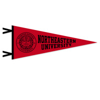 Northeastern Huskies Logo Pennant from Collegiate Pacific