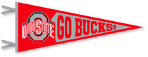 Ohio State Buckeyes Multi Color Logo Pennant from Collegiate Pacific