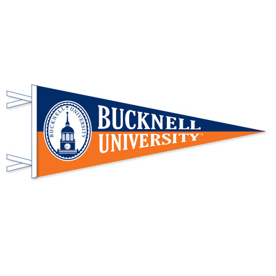 Bucknell Multi Color Logo Pennant from Collegiate Pacific