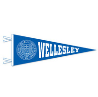 9x24 Pennant One Color