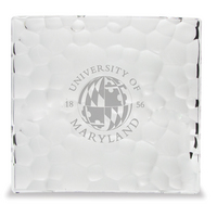 Crystal Nachtman Sphere Square Plate 11 inch