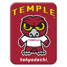 Tokyodachi Magnet Gift Acessories