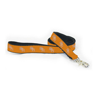 Ribbon Dog Leashes