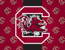 South Carolina Gamecocks Note Cards