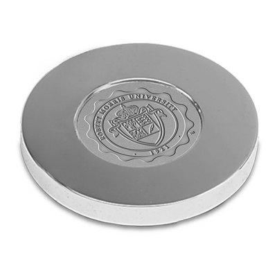 Silver Paperweight