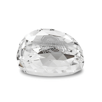 Etched Gem Cut Faceted Crystal Paperweight