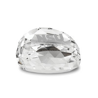 Etched Gem Cut Faceted Crystal Paperweight 2.5D