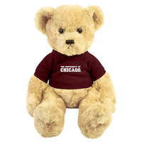University of Chicago Dexter the Bear