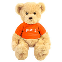 Bucknell Dexter the Bear