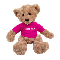 Texas A&M Aggies Dexter the Bear