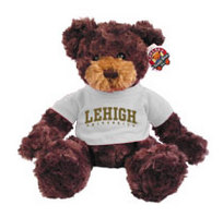 Lehigh Dexter the Bear