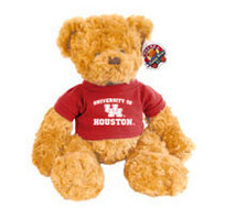 Houston Cougars Dexter the Bear
