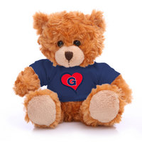 Classic Bear with Tee
