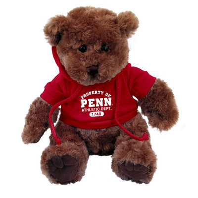 Penn Traditional Bear with Hoodie