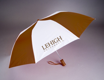 Lehigh Automatic Folding Umbrella