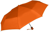 Bucknell Mini Folding Umbrella